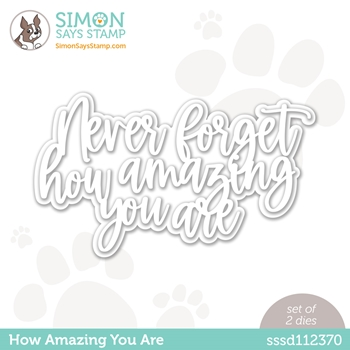 Simon Says Stamp HOW AMAZING YOU ARE Wafer Dies sssd112370 Born to Sparkle