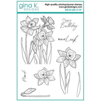 Gina K Designs BEST OF LUCK Clear Stamps hs23