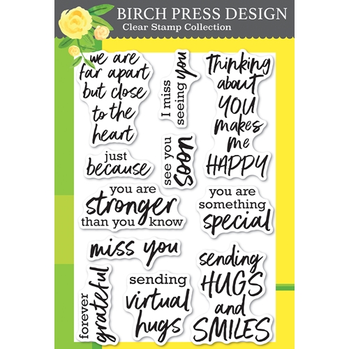 Birch Press Design BRUSH SENTIMENTS clear stamp set cl8158 Preview Image