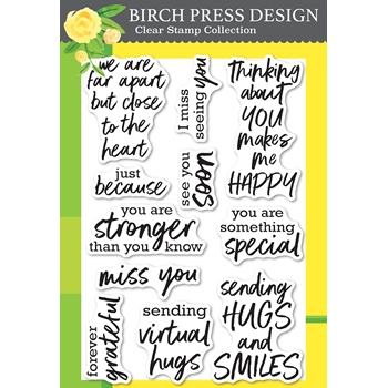 Birch Press Design BRUSH SENTIMENTS clear stamp set cl8158