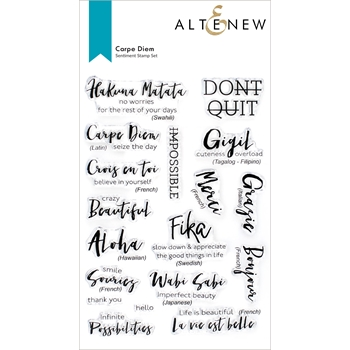 Altenew CARPE DIEM Clear Stamps ALT6093