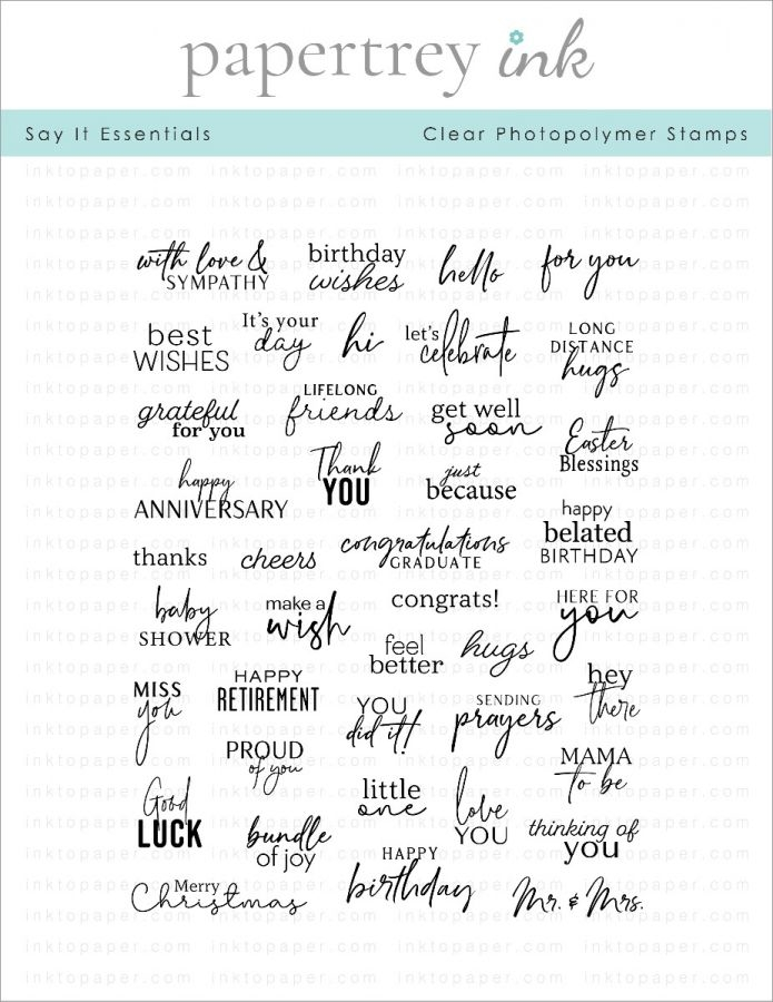 Papertrey Ink SAY IT ESSENTIALS Clear Stamps 1287 zoom image