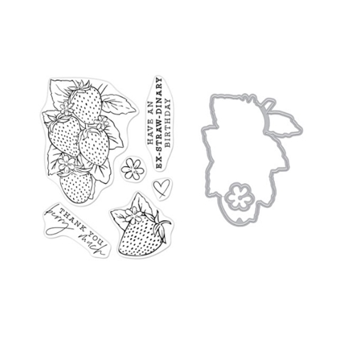 Hero Arts FLORALS STRAWBERRIES Clear Stamp and Die Combo sb277ha Preview Image