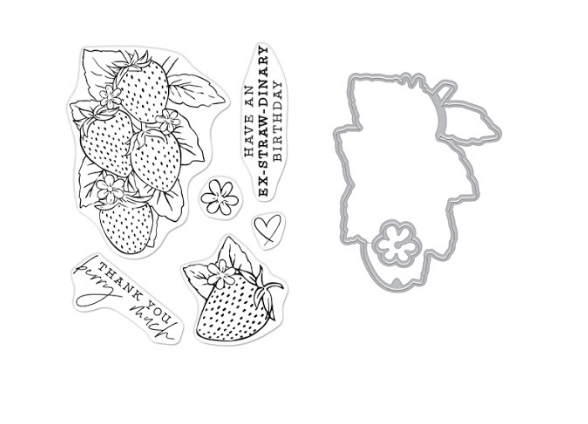 Hero Arts FLORALS STRAWBERRIES Clear Stamp and Die Combo sb277ha zoom image