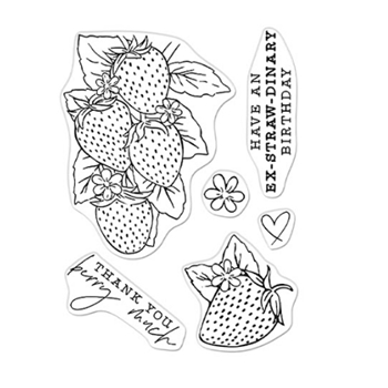Hero Arts Clear Stamps FLORALS STRAWBERRIES LINE ART CM540