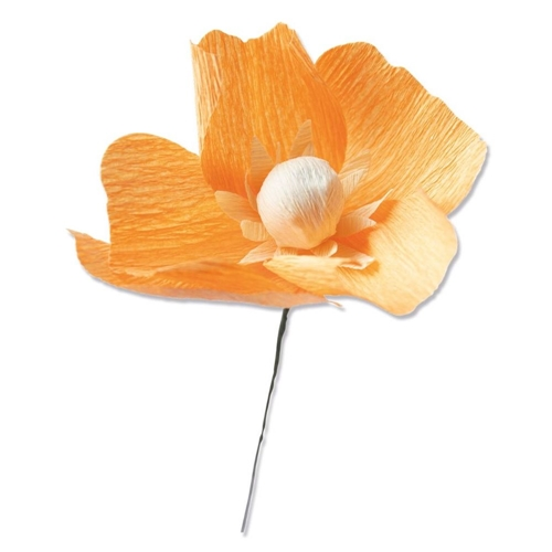 Sizzix CALIFORNIA POPPY Thinlits Dies 664921 Preview Image
