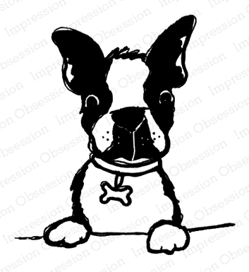 Impression Obsession Cling Stamp DOG WITH BONE COLLAR D21393 Preview Image
