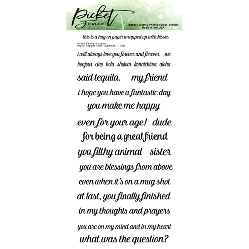 Picket Fence Studios WORD DIE TOPPER SUBTITLES Clear Stamps s188 Preview Image
