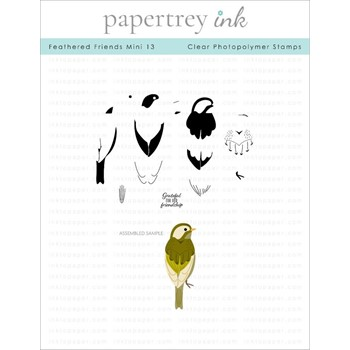 Papertrey Ink FEATHERED FRIENDS MINI 13 Clear Stamps 1305