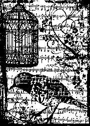 Tim Holtz Rubber Stamp BIRDSONG P4-1487 Stampers Anonymous