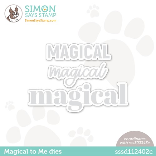 Simon Says Stamp MAGICAL TO ME Wafer Die sssd112402c Make Magic Preview Image