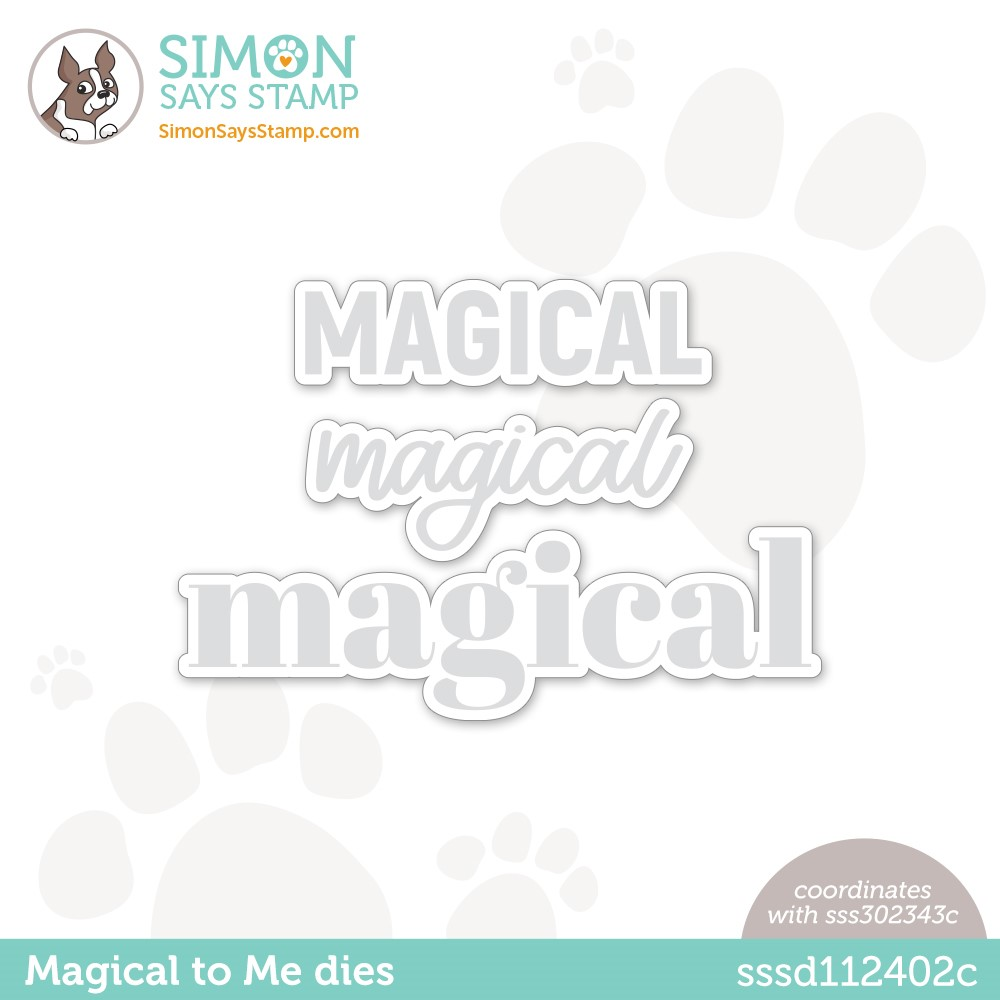 Simon Says Stamp MAGICAL TO ME Wafer Die sssd112402c Make Magic zoom image