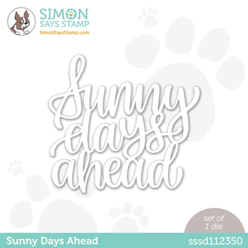 Simon Says Stamp SUNNY DAYS AHEAD Wafer Die sssd112350 Make Magic Preview Image