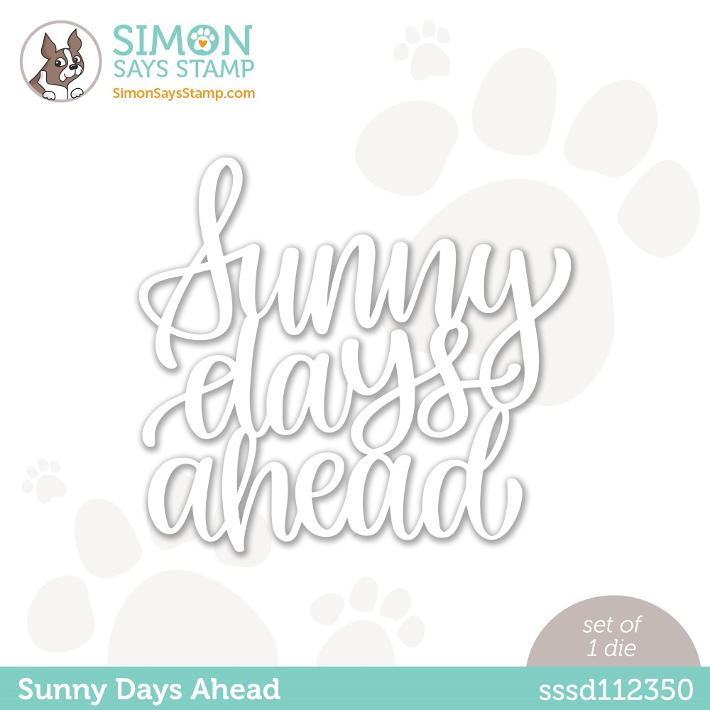 Simon Says Stamp SUNNY DAYS AHEAD Wafer Die sssd112350 Make Magic zoom image