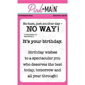 Pink and Main KSUE BIRTHDAY 2 Clear Stamps PM0475