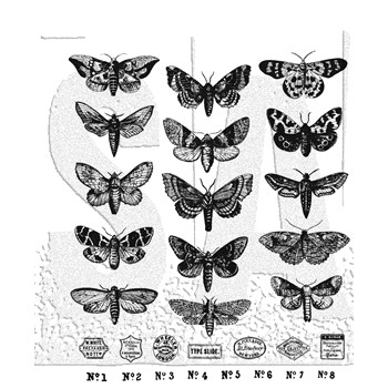 Tim Holtz Cling Rubber Stamps MOTH STUDY CMS436 **