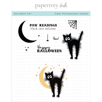 Papertrey Ink BOO BLACK CAT Clear Stamps 1322