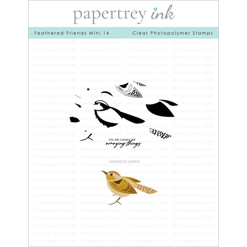 Papertrey Ink FEATHERED FRIENDS MINI 14 Clear Stamps 1315 Preview Image