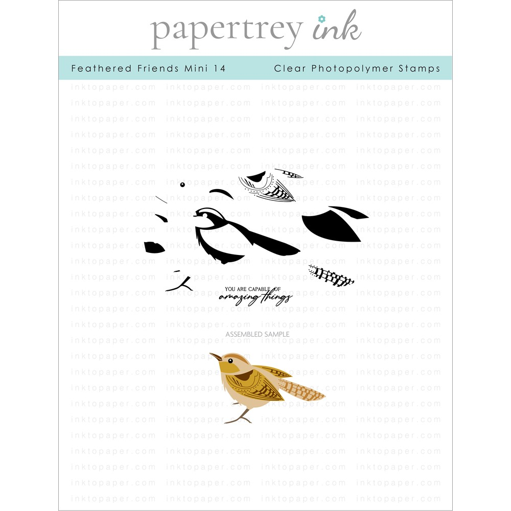Papertrey Ink FEATHERED FRIENDS MINI 14 Clear Stamps 1315 zoom image