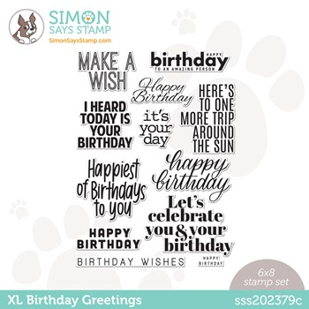 Simon Says Clear Stamps XL BIRTHDAY GREETINGS sss202379c Stamptember