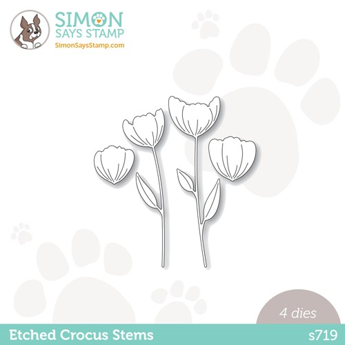 Simon Says Stamp ETCHED CROCUS STEMS Wafer Dies s719 Stamptember Preview Image