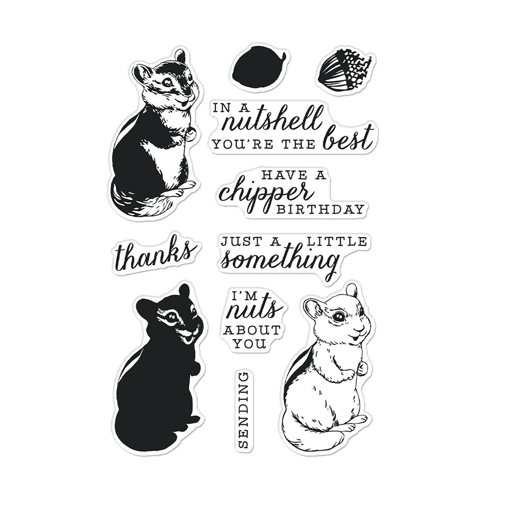 Hero Arts Clear Stamps COLOR LAYERING CHIPMUNK CM568 zoom image