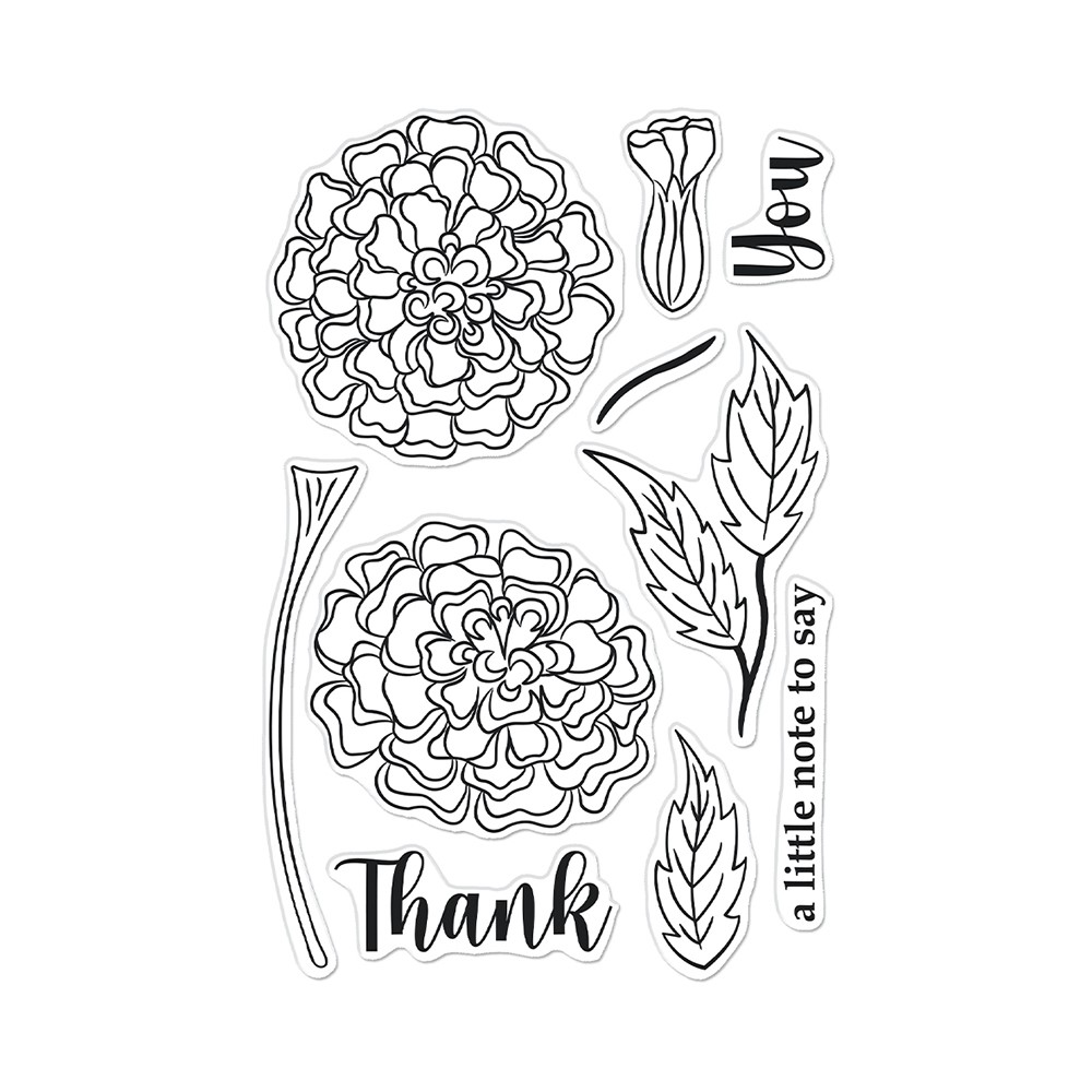 Hero Arts Clear Stamps MARIGOLDS CM566 zoom image