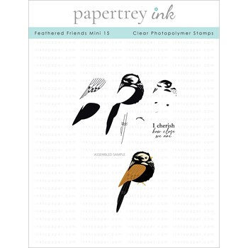 Papertrey Ink FEATHERED FRIENDS MINI 15 Clear Stamps 1326
