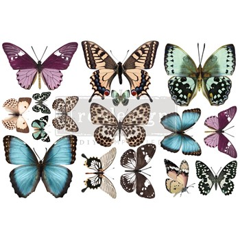 Prima Marketing BUTTERFLY ReDesign Decor Transfers 655969
