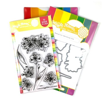 Waffle Flower AMARYLLIS Clear Stamp and Die Combo WFC891