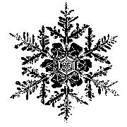 Tim Holtz Rubber Stamp SNOWFLAKE 1 One H2-1584 Stampers Anonymous Preview Image