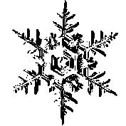 Tim Holtz Rubber Stamp SNOWFLAKE 2 Two H2-1585 Stampers Anonymous Preview Image