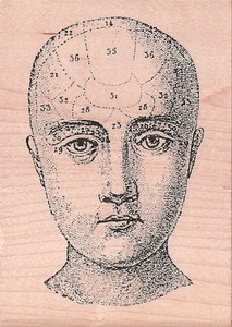 Stampers Anonymous Rubber Stamp PHRENOLOGY HEAD u1-1119 zoom image