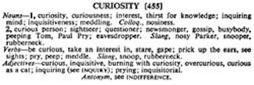 Tim Holtz Rubber Stamp CURIOSITY Stampers Anonymous j3-1661 Preview Image