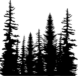 Impression Obsession Cling Stamp PINE TREES CC101 zoom image